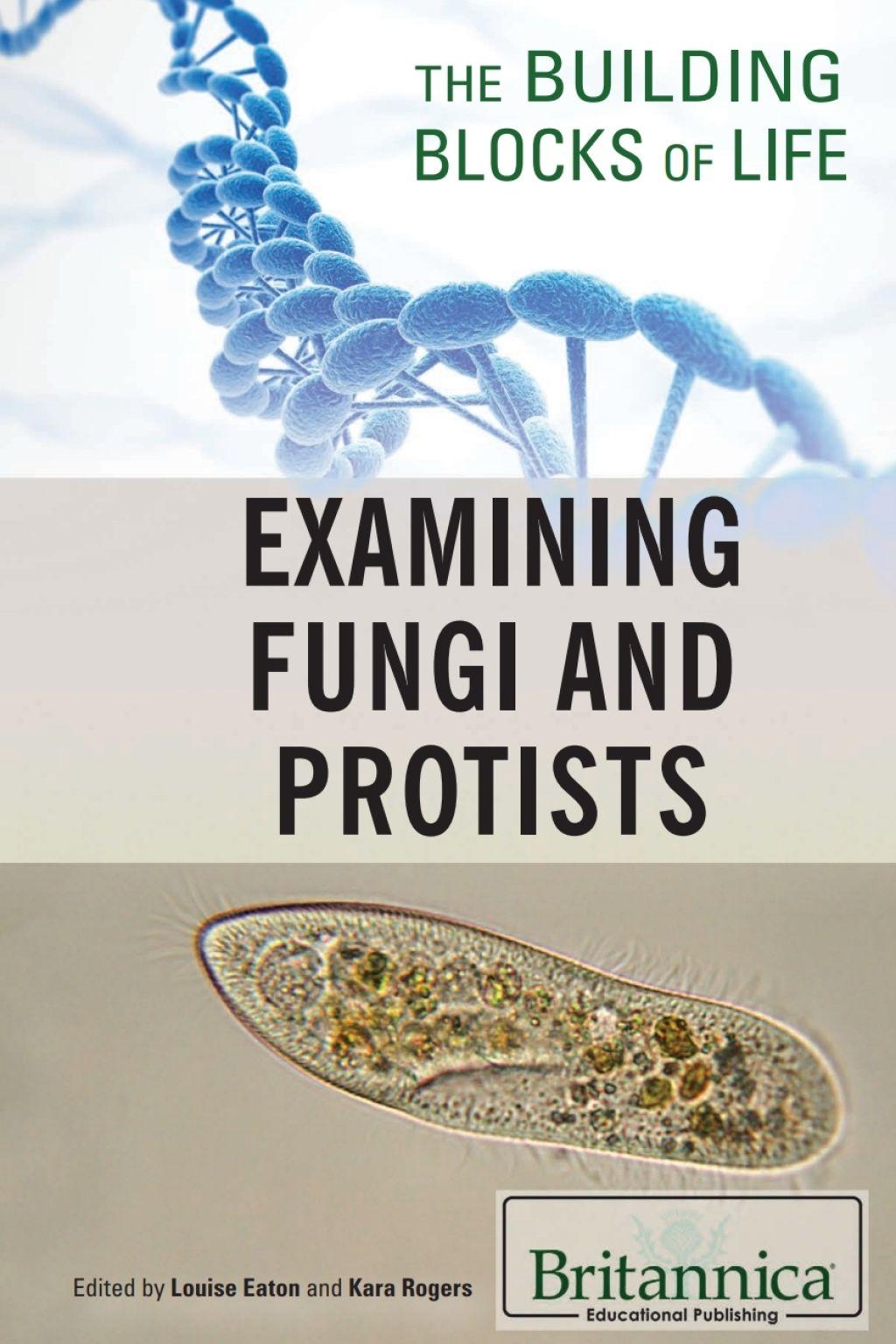 Examining Fungi And Protists Ebook Rental