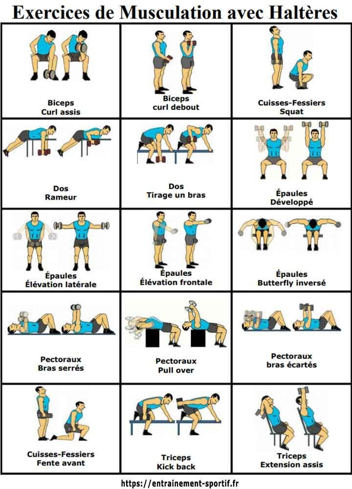 15 dumbbell exercises #dumbbellexercises