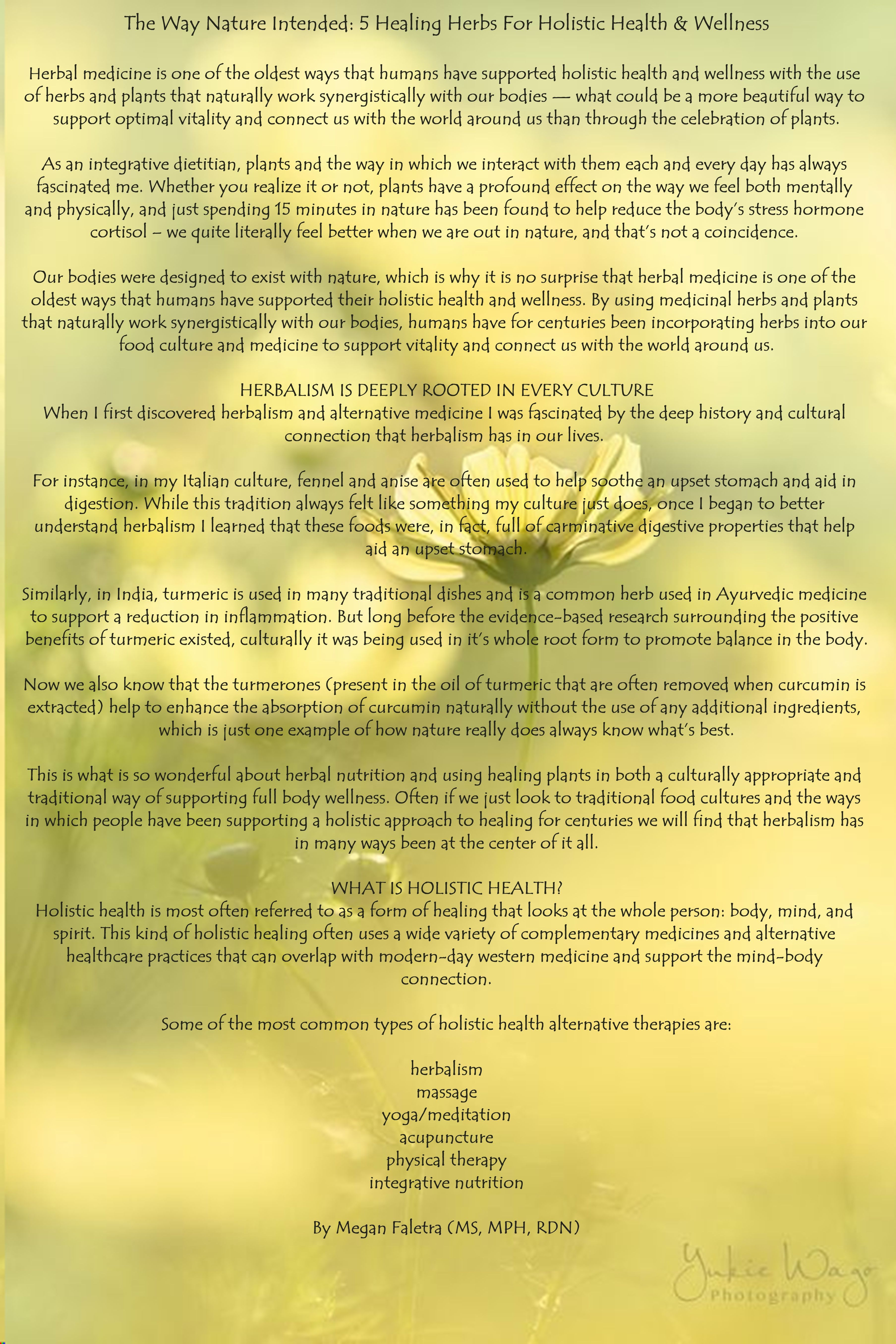The Way Nature Intended 5 Healing Herbs For Holistic Health Wellness Holistic Health Healing Herbs Health And Wellness