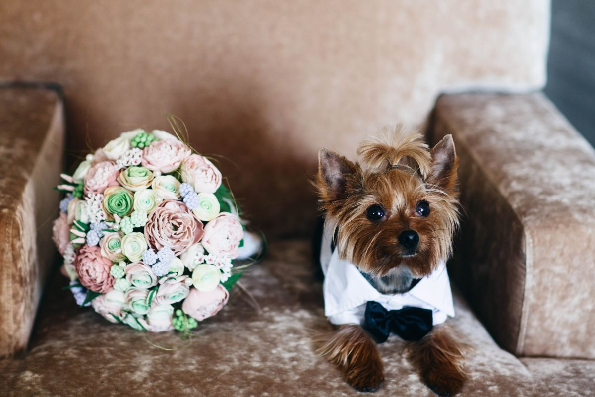 Regret spending up on your wedding? You're not alone