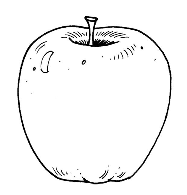 Apple Slices Colouring Pages Apple Coloring Pages