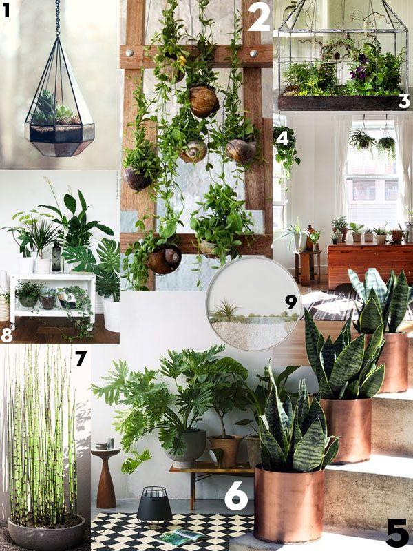 Interieurtrend: Planten - Residence   Huis   Pinterest