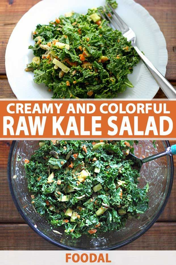 Are you looking for a healthy and tasty cool weather dish full of leafy greens   Salads