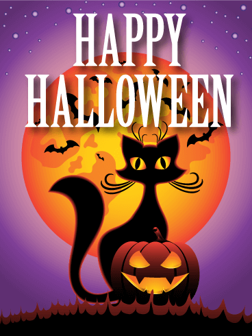 Spooky Night! Happy Halloween Card: A lovely black cat with long ...