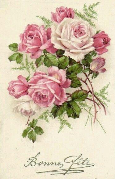 Aliento de rosas