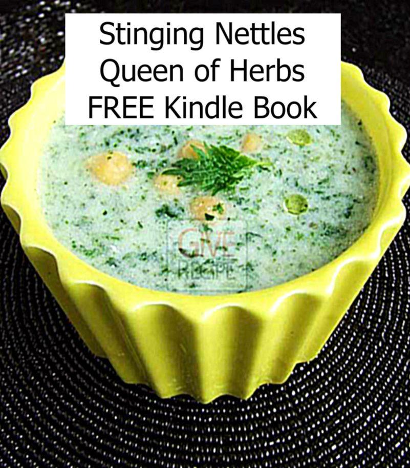 Nettles, an ancient cure for arthritis  Nettle soup