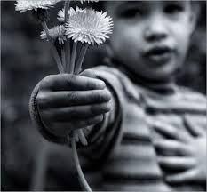 minha rosa com amor....eu te dou todo  o meu amor