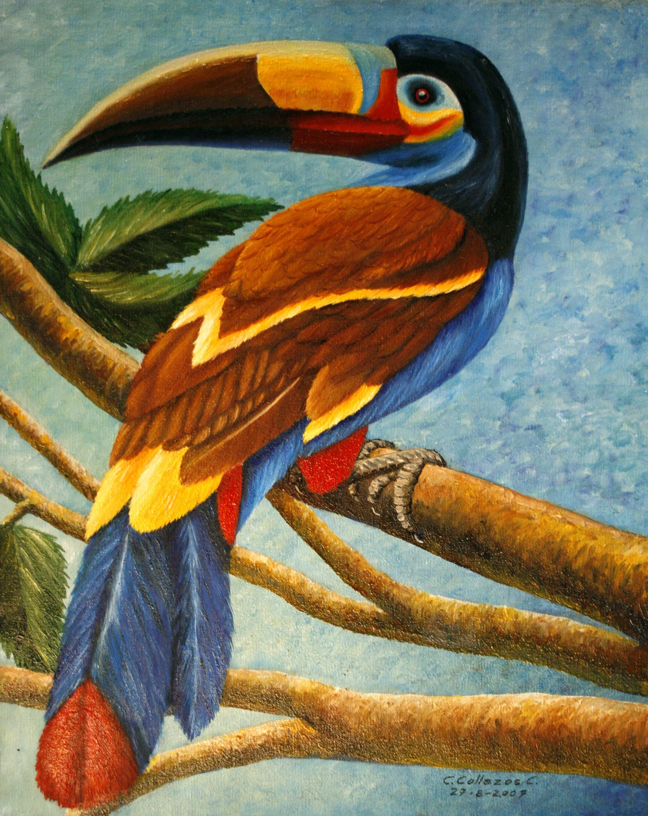 Resultado de imagen para pinturas de pajaros al oleo | cuadros ...