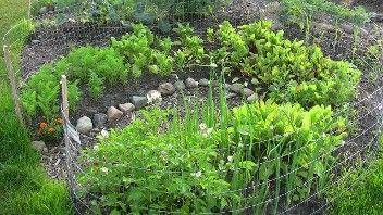 fenced keyhole gardens | Greenhouse, garden, yard ideas ...