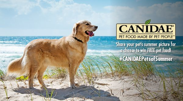 You can find our premium pet food products at a variety of