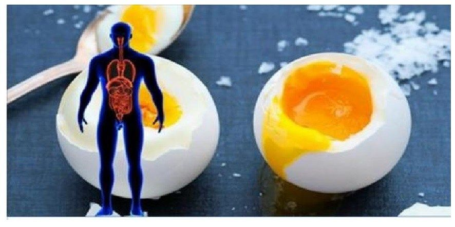 what part of an egg has cholesterol
