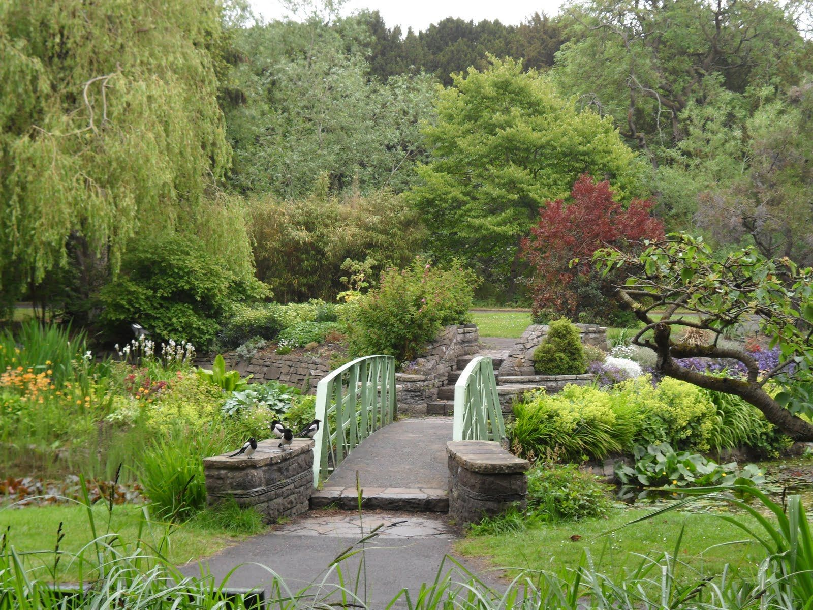 The National Botanic Garden Of Ireland Irish Garden Garden Design Botanical Gardens