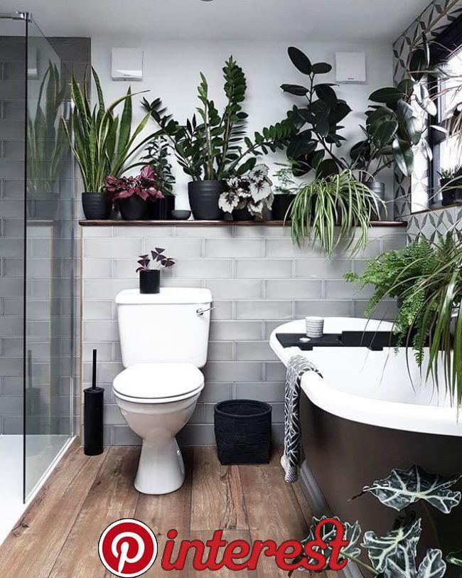 Badezimmerpflanzen , badezimmerpflanzen in 2020