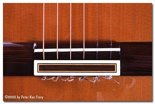 Guitar Bridge Types Google Search Chevalet Guitare Chevalet Guitare
