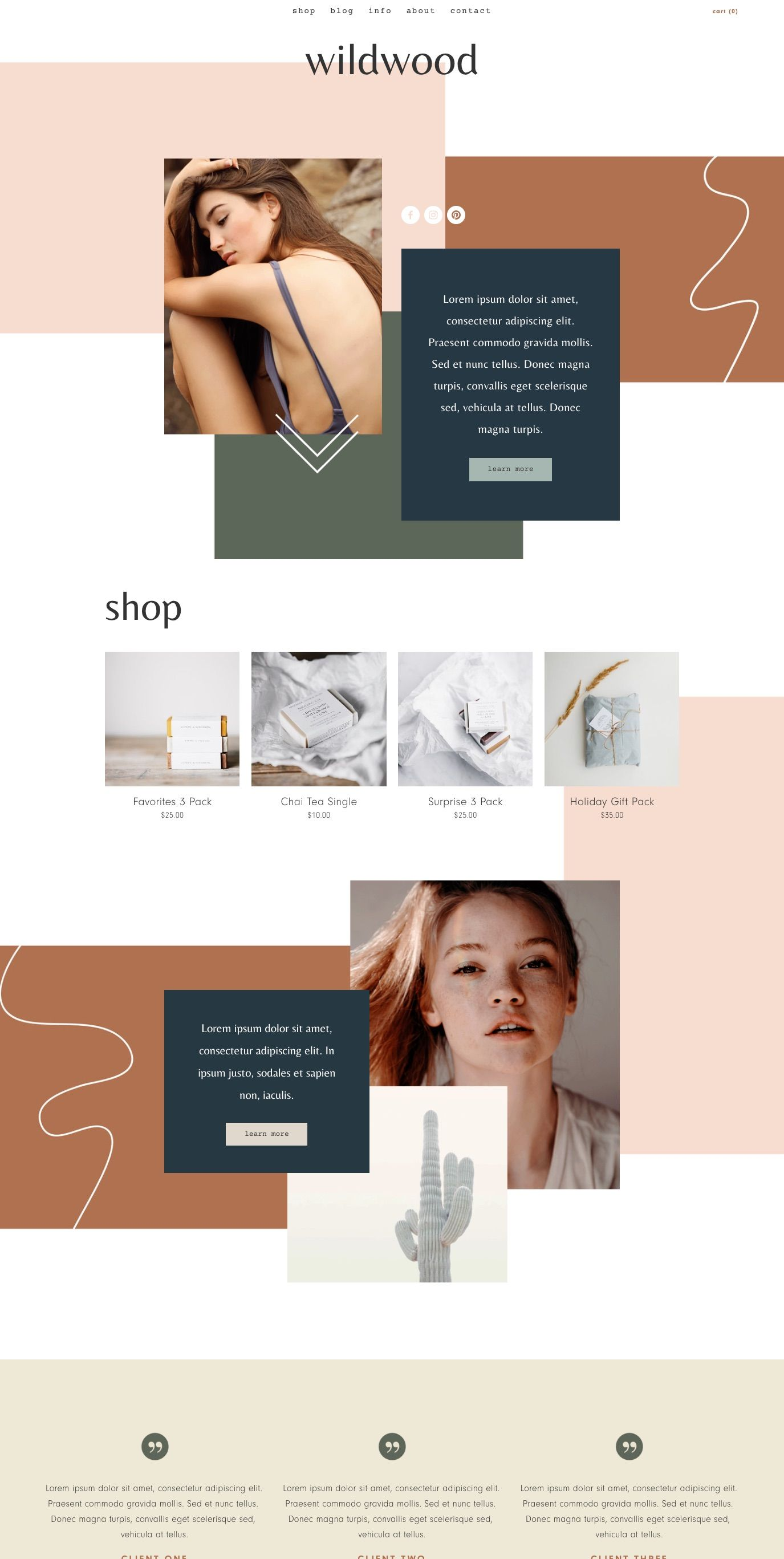 Squarespace Template Wildwood in 2020 Web design