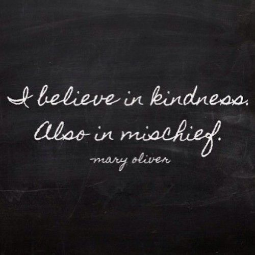 I believe in kindness. Also in mischief. -Mary Oliver
