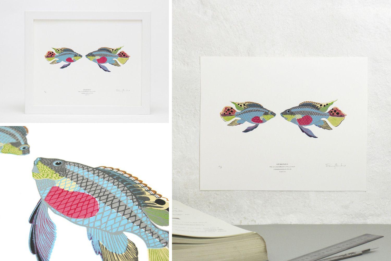 Fanny_Shorter-kribensis-fish-print.jpg