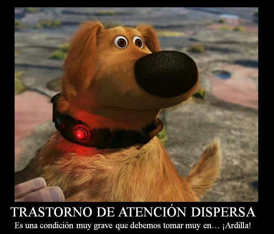 Pin By Lisetta Guazzotti On Animales Disney Best Friends Dug The Dog Hunger Games