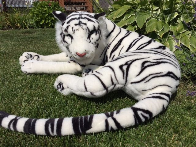 Huge Toys R Us Animal Alley Plush White Siberian Tiger 50 Stuffed