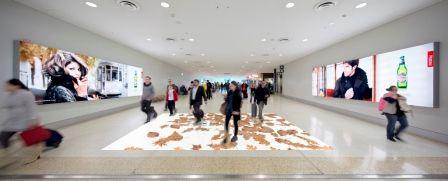AUSTRALIAN Interactive Floor And Wall