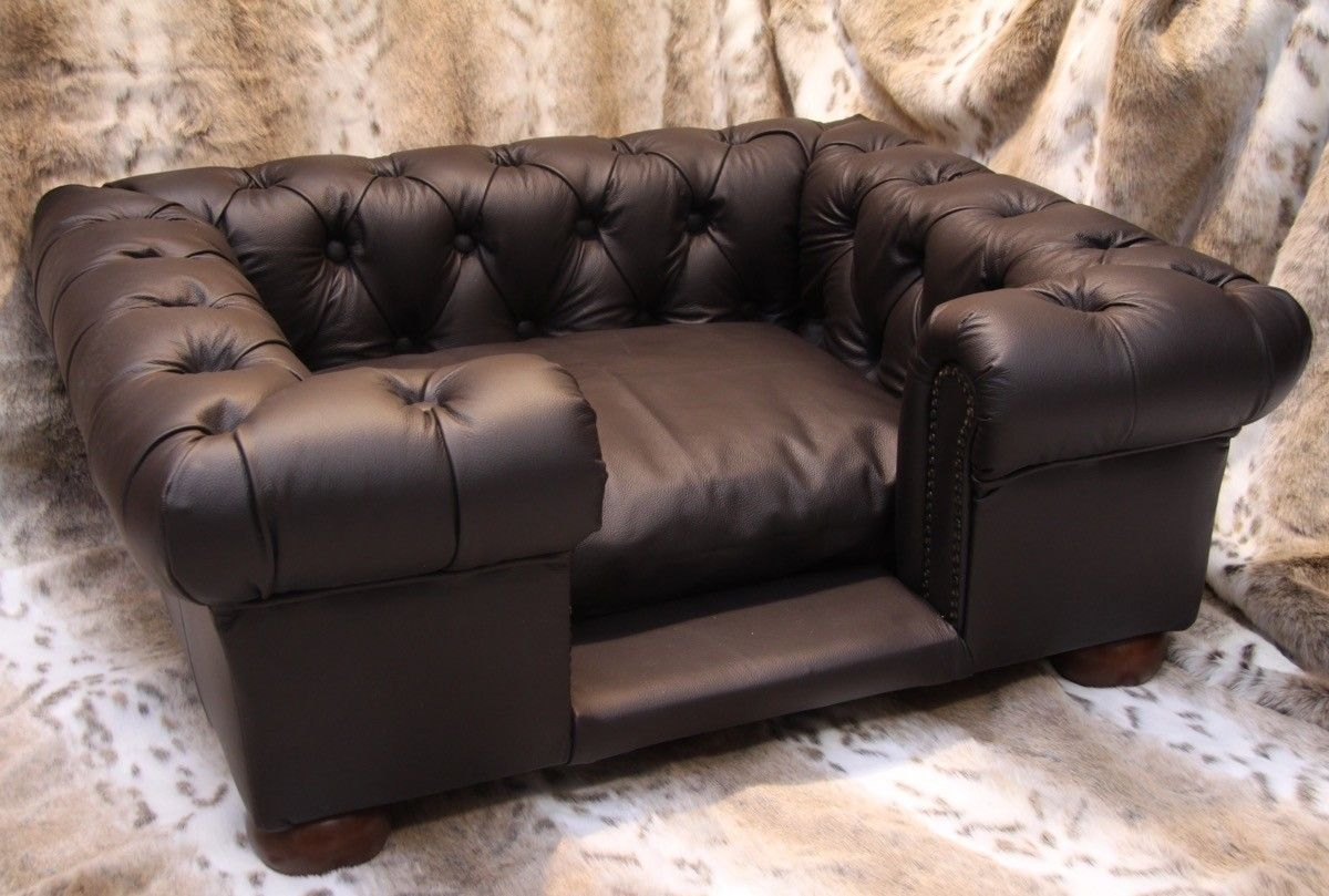 Real Leather Dog Sofas Sofa Dog Bed Couch