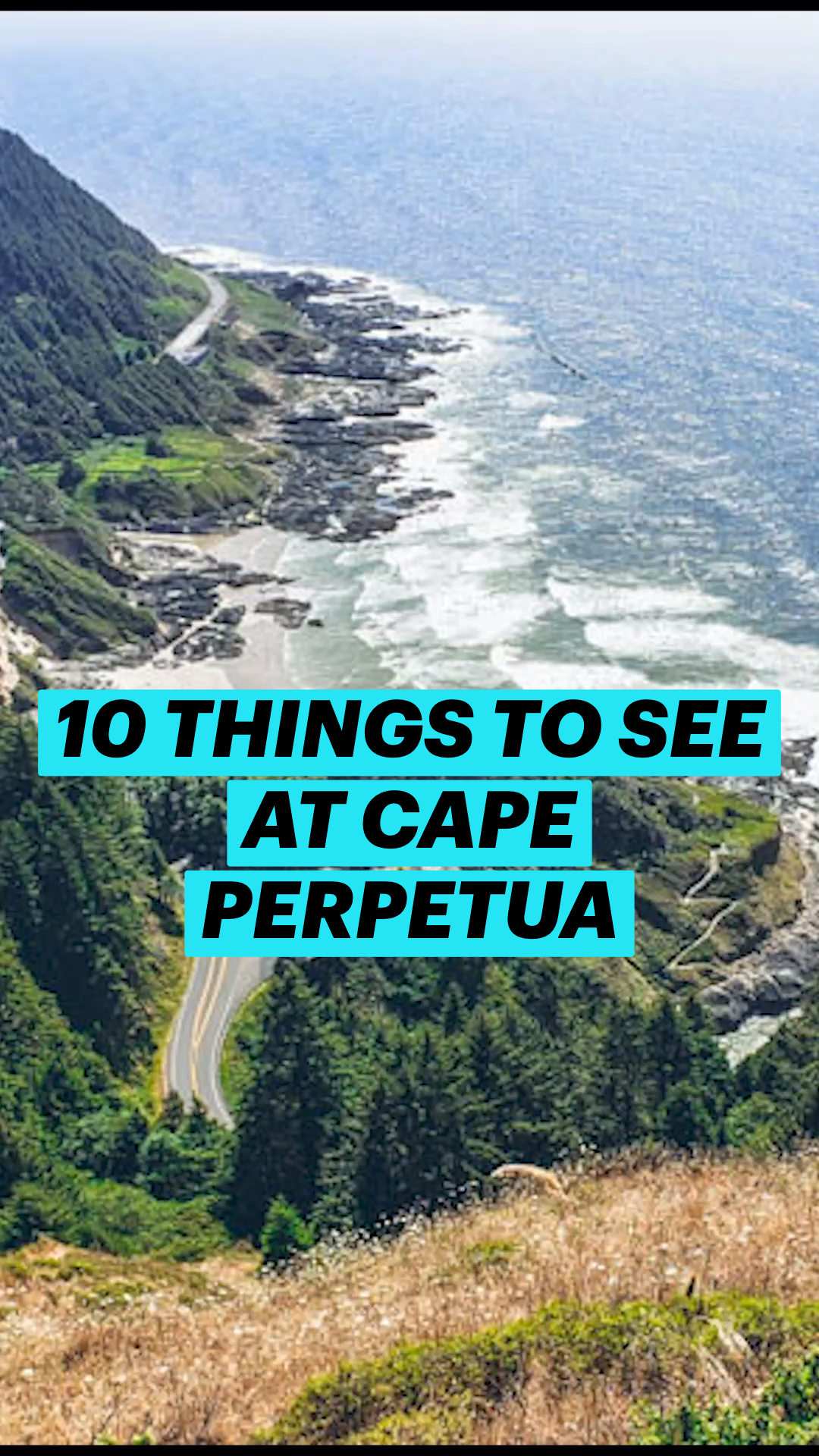 10 THINGS TO SEE AT CAPE PERPETUA