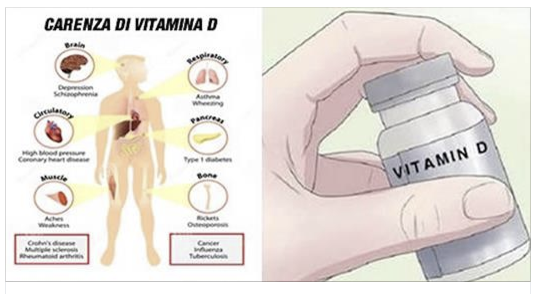bruciare grassi vitamina d
