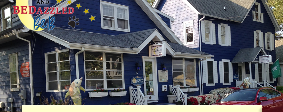 Bewitched & BEDazzled Rehoboth Beach, DE Bed & Breakfast