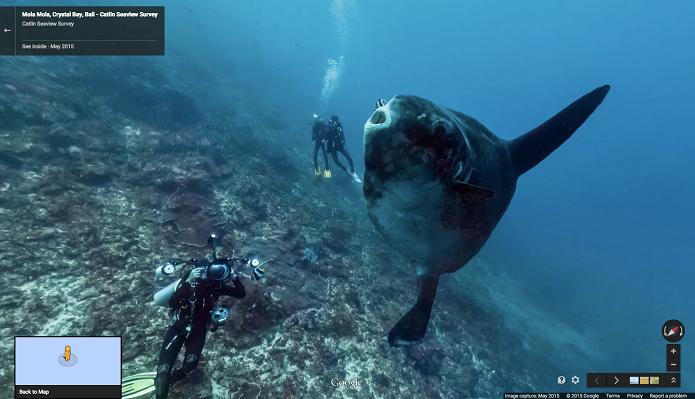 Em comemoração ao Dia Mundial dos Oceanos, o Google Street View disponibilizou imagens de diversos locais subaquáticos em 3D que mostram a fauna e a flora marinha. (Foto: Divulgação/Google)