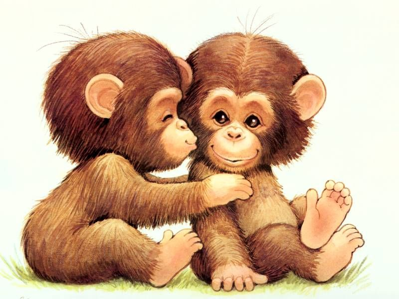 Monkey Love | Monkey, Cartoon and Animal