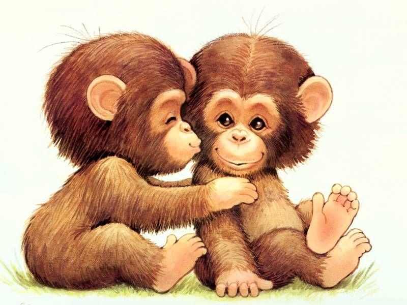 Monkey Love Cute Baby Monkey Monkey Pictures Cute Cartoon Wallpapers Cute baby monkey cartoon wallpaper