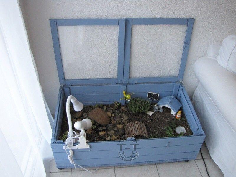 Exemples enclos pour bebes ou juveniles tortue for Amenagement jardin pour tortue