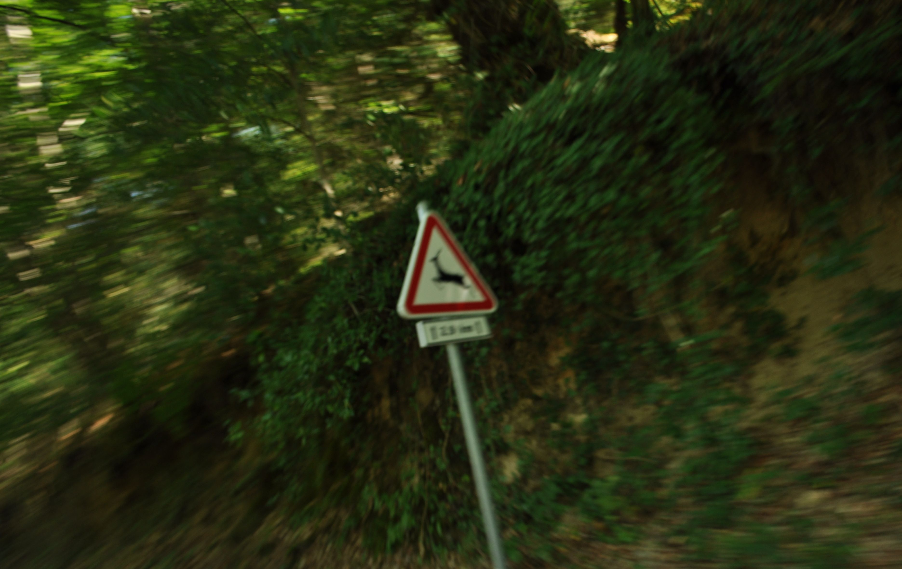 Zona Protegida, Gerês, Portugal