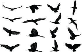 Image result for bird simple | Bird silhouette, Flying ...