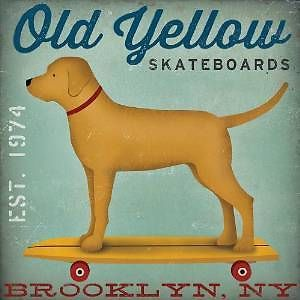 Old Yellow Skateboards Golden Yellow Lab Brooklyn Ny By Ryan Fowler 12x12 Poster Ryan Fowler Stretched Canvas Prints Canvas Giclee