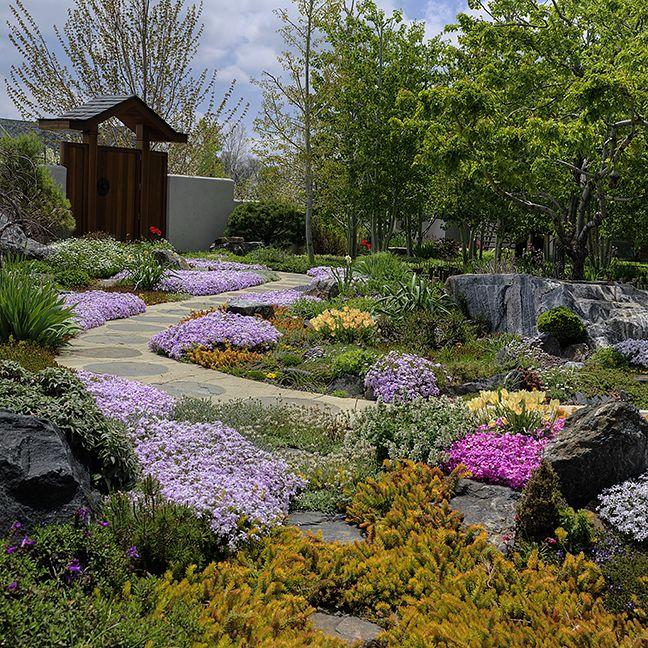 Water wise garden composition by marpa landscape design - Drought tolerant plants landscape design ...