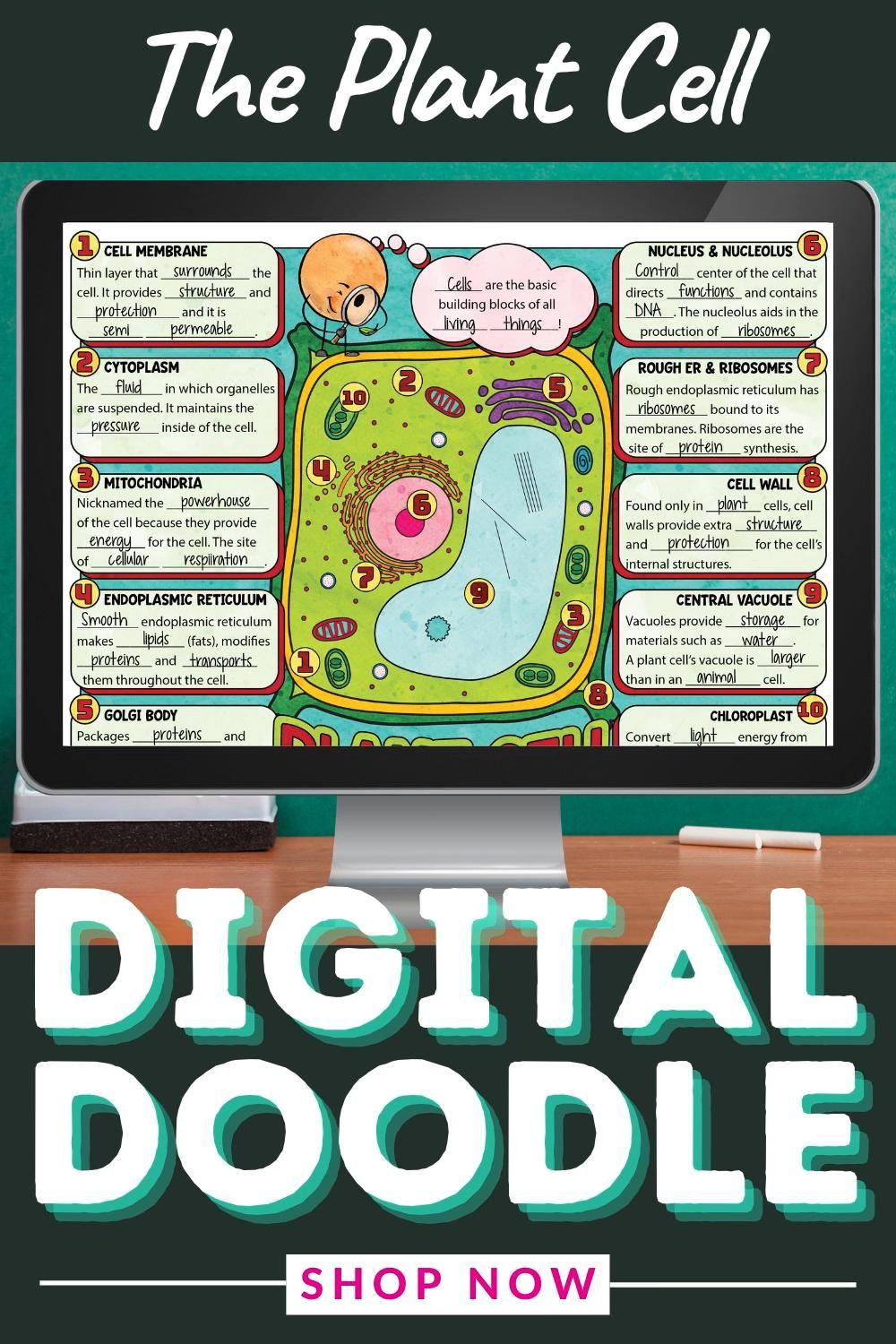 Plant Cell Organelles Digital Doodle Activity For Middle School And Homeschool Science Video Organelles Plant Cell Doodle Notes [ 1500 x 1000 Pixel ]