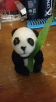 Panda by felty24
