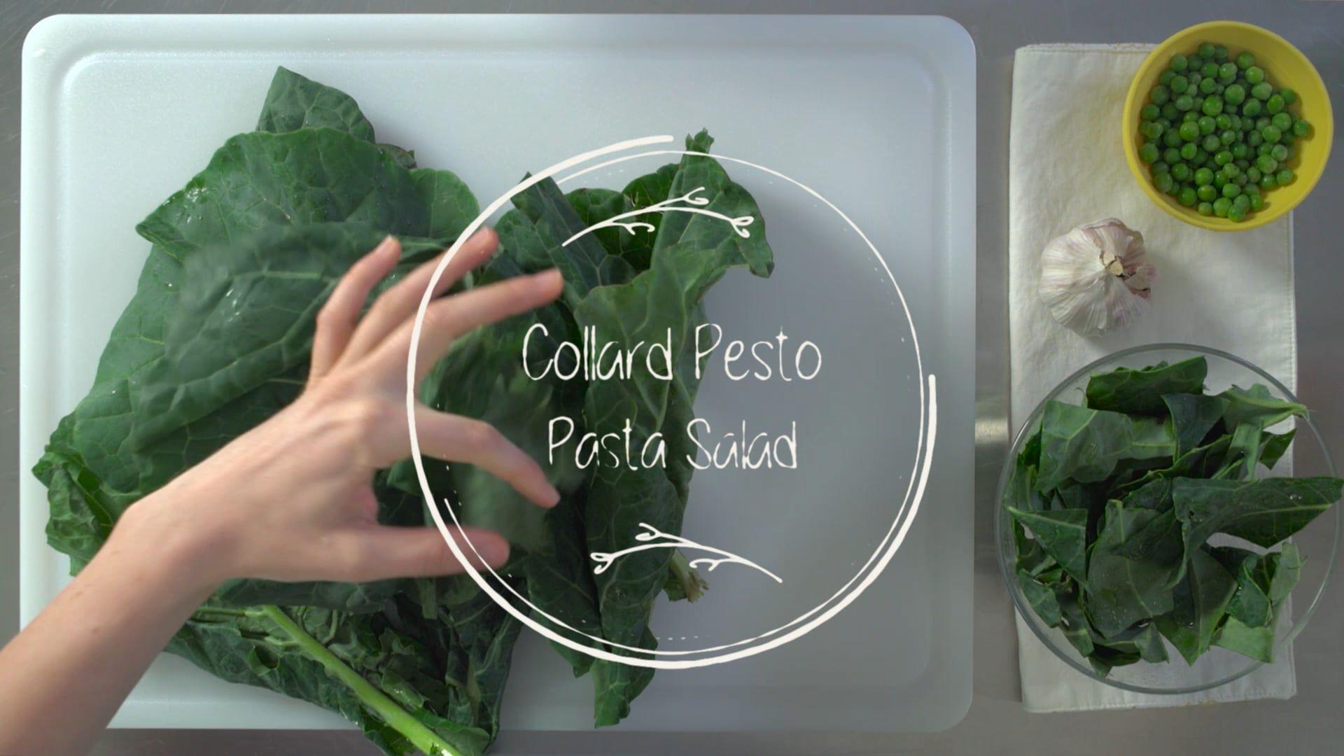 Bitesize: Collard Pesto Pasta Salad