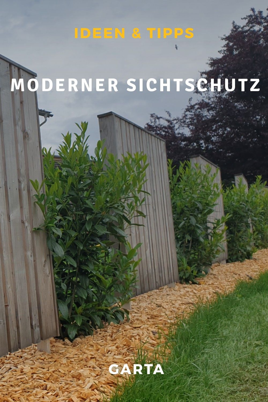 Moderner Sichtschutz Im Garten Ideen Aus Holzzaun Und Hecken Sichtschutz Garten Sichtschutzzaun Garten Zaun Garten