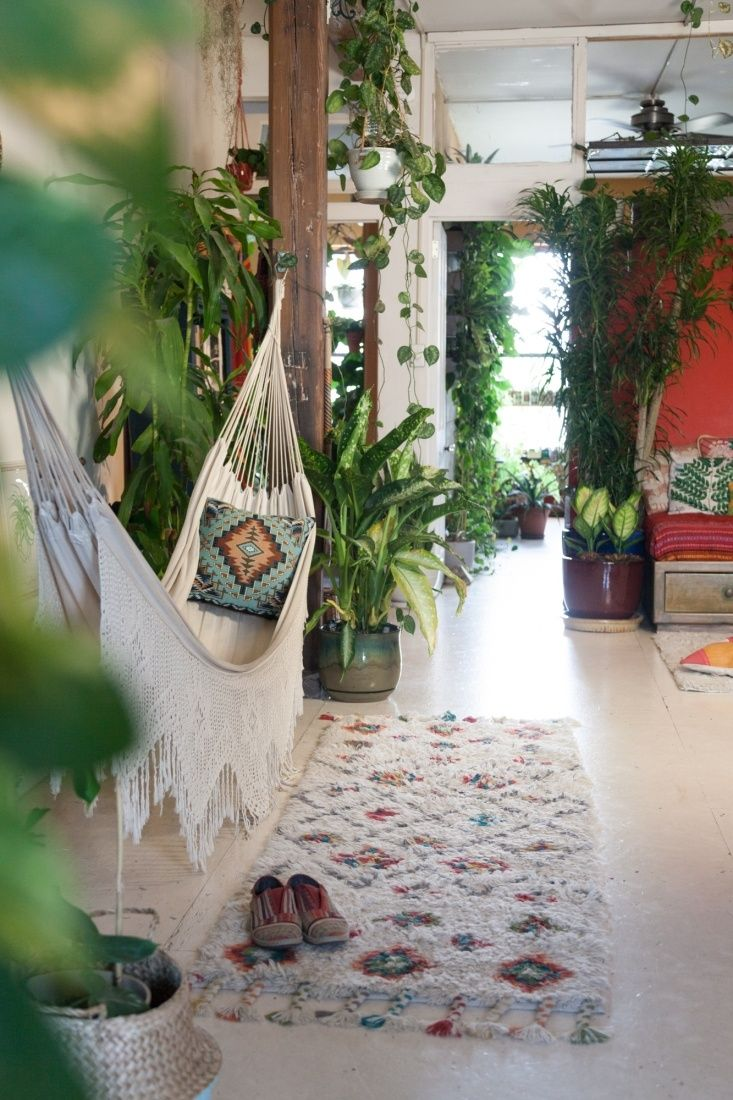 Living with plants in a brooklyn apartment cozy pinterest