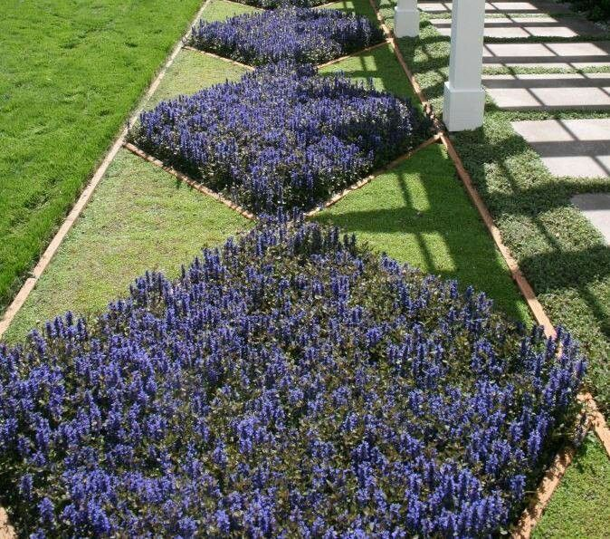 Diamond Shaped Flower Beds Flower Beds Planting Flowers Garden