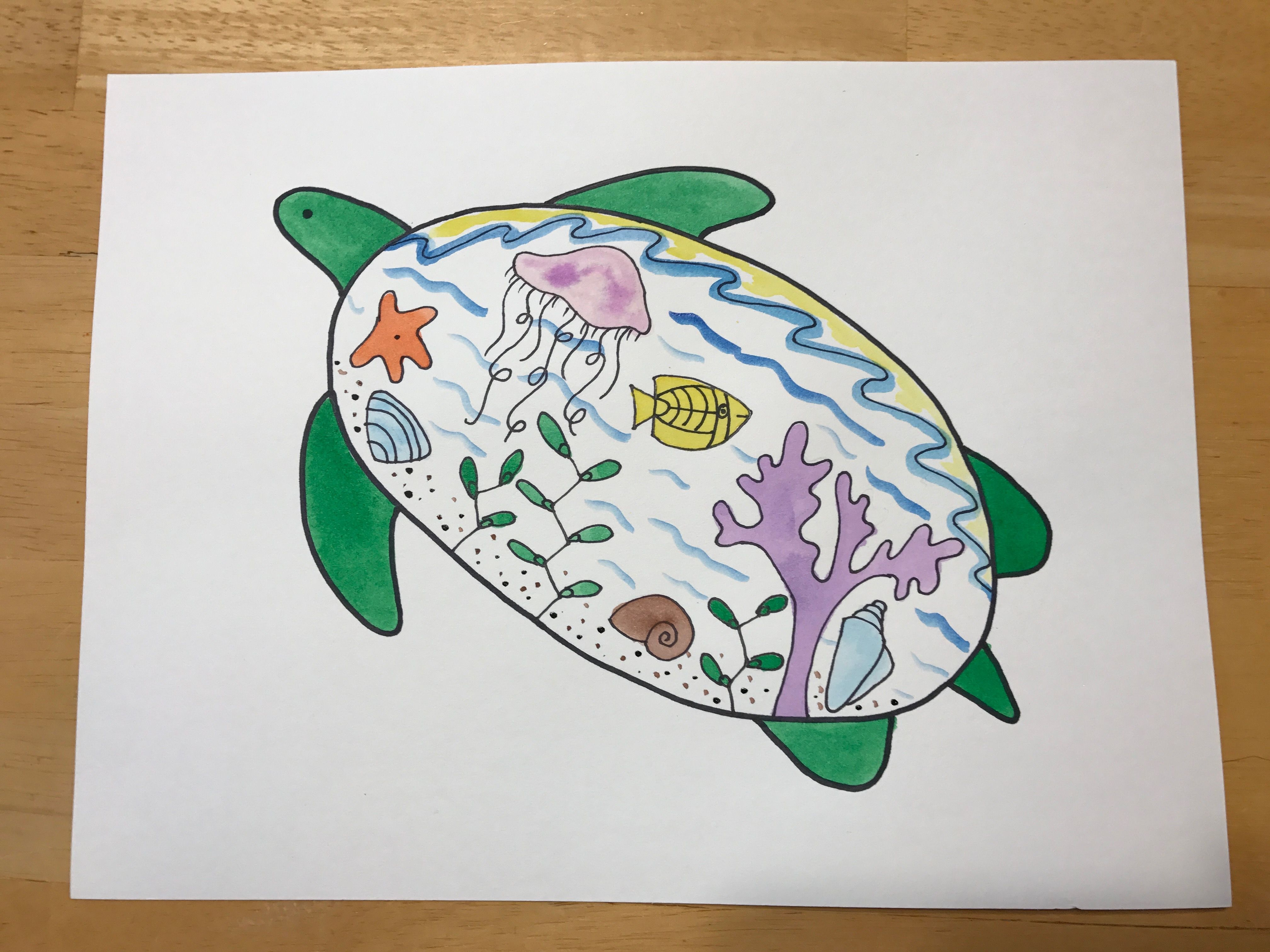 3rd Grade Animal Lesson