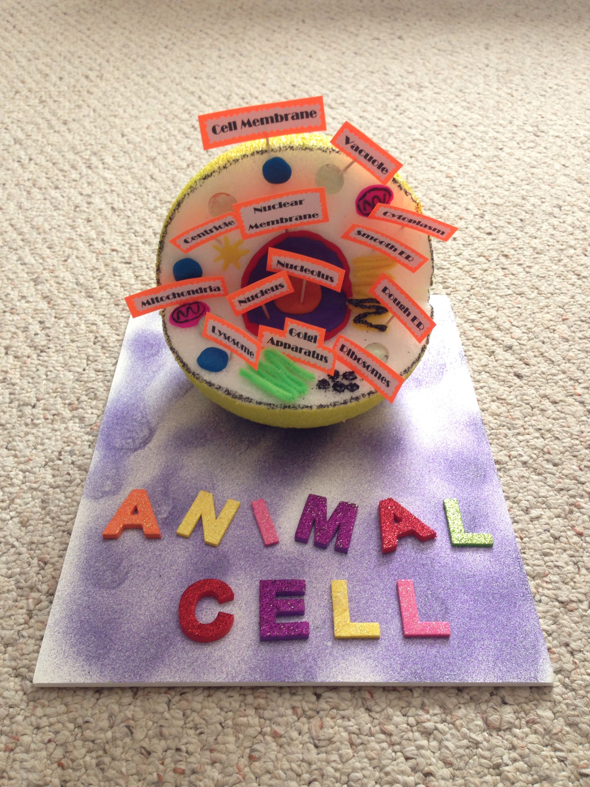 Animal Cell for Mekayla's Biology Class | Animal cell ...