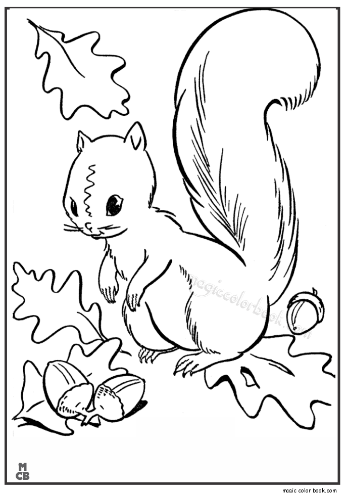 Kinder Art Autumn Leaves Fall Coloring Pages Colour Book Contours To Color Printable