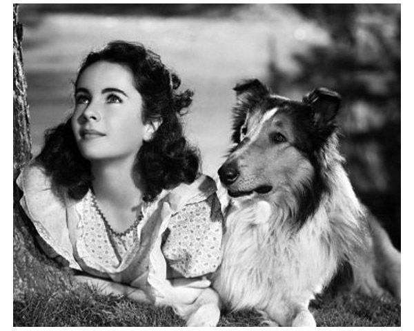 Elizabeth Taylor. She was my idol when I first discovered National Velvet.