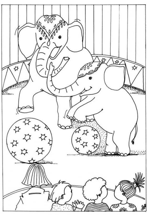 Circus Coloring Pictures Of Animals Printable Coloring Pages