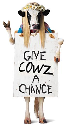 ¿Leche de vacas felices o de vacas estresadas?...Tú decides. Razones para comprar leche ecológica o de ganadería tradicional extensiva | Medicina de Familia en la Red - Dr.López Heras 2.0