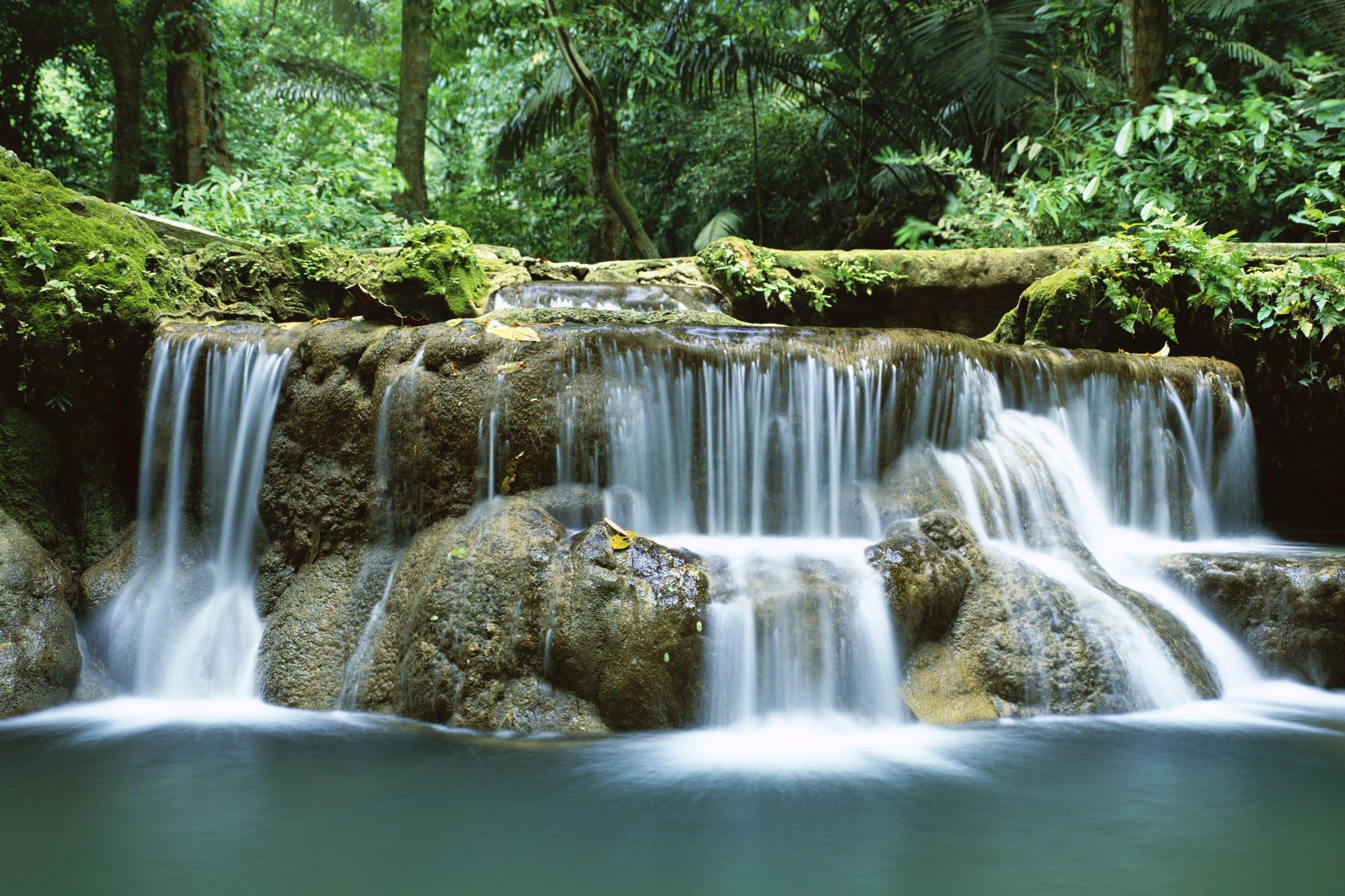 Real Tropical Waterfall Google Search Waterfall Wallpaper Waterfall Scenery