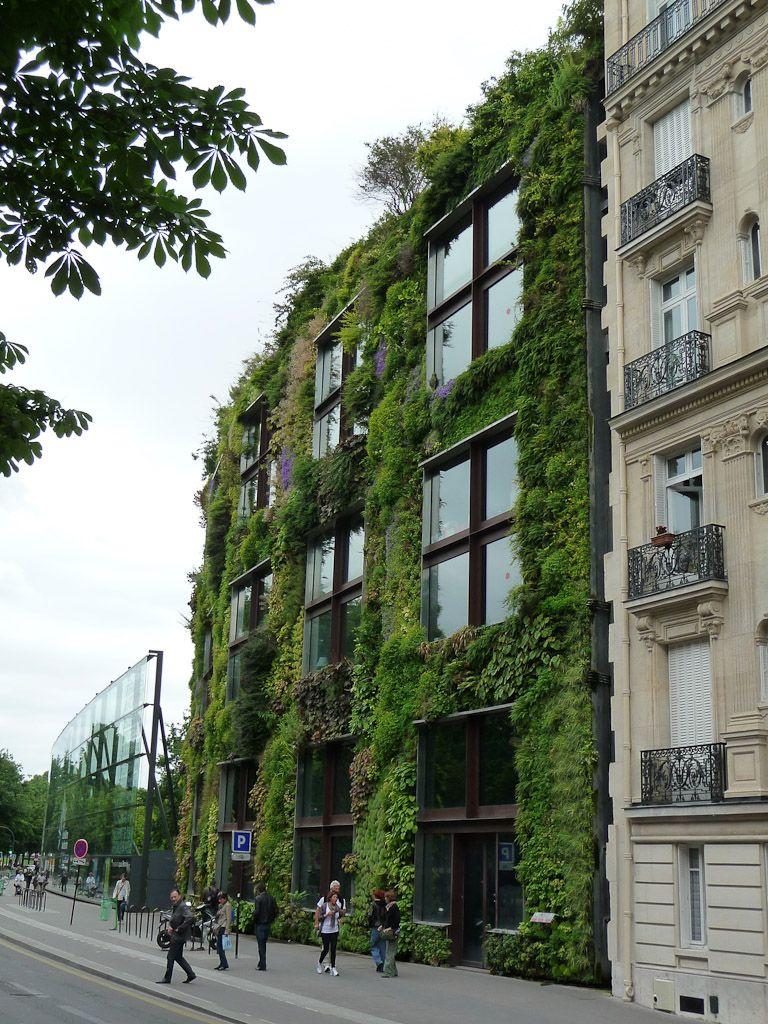 Le mur v g tal du mus e du quai branly paris 7e au printemps jardins que j 39 aime gardens i - Immeuble vegetal ...